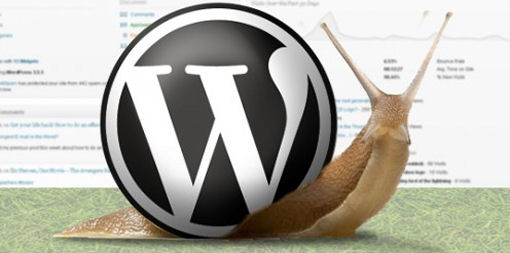 5 Things that Make Your WordPress Site Run Slow and How to Fix Them