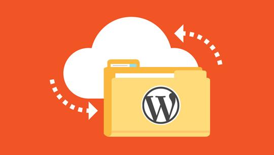 Best Incremental WordPress Backup Plugin | WP Time Capsule
