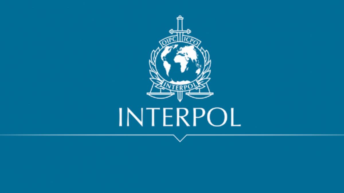 Interpol Intercepts $83 Million Fighting Financial Cyber Crime